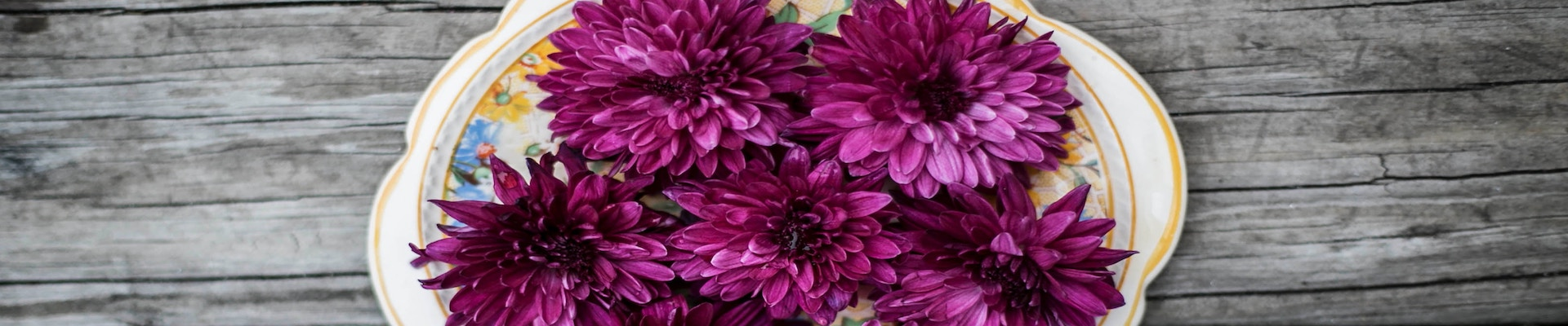 Purple dahlia flower arrangement displayed on a decorative plate